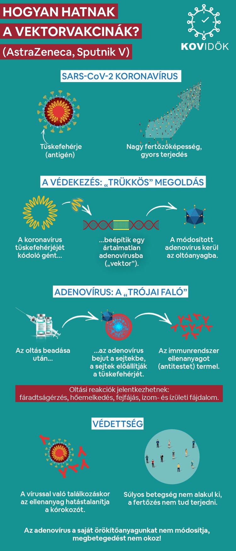 Vektorvakcinák