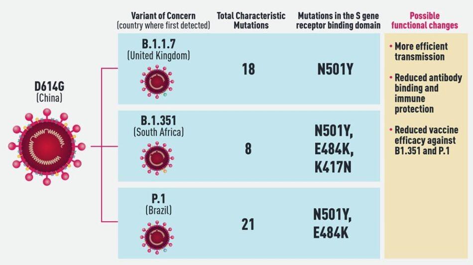Koronás mesék X - Az oltás, magyarázat: Fánk - segédanyag. Fokozza az immunsejtek fogékonyságát az immunválaszra
