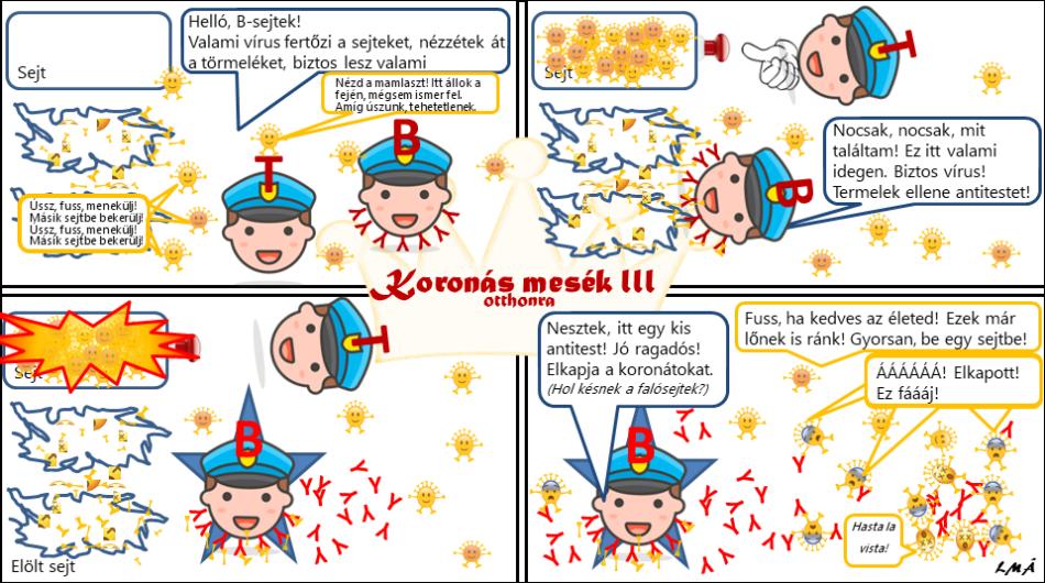 Koronás mesék III - A B-limfocita