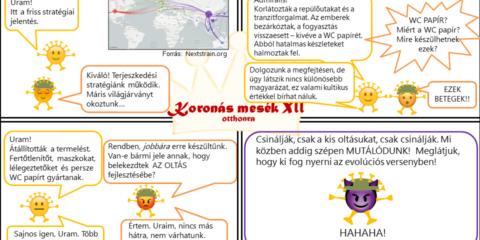 Koronás mesék XII - Világjárvány