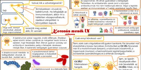 Koronás mesék IX - Vírusok és baktériumok